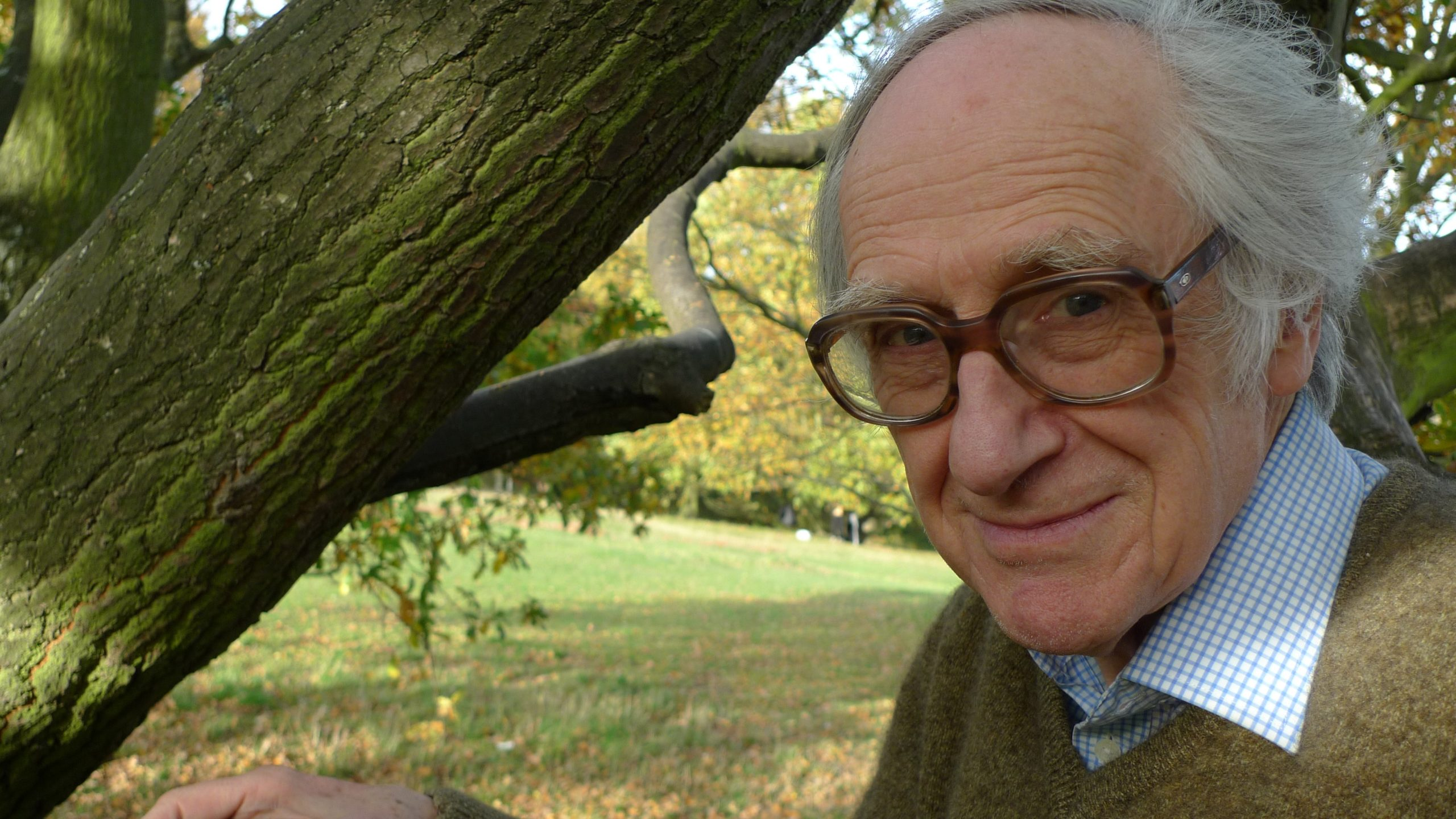 Photograph of the late Dr. David Fleming in an oak tree. By Henrik Dahle, 4th November 2010.